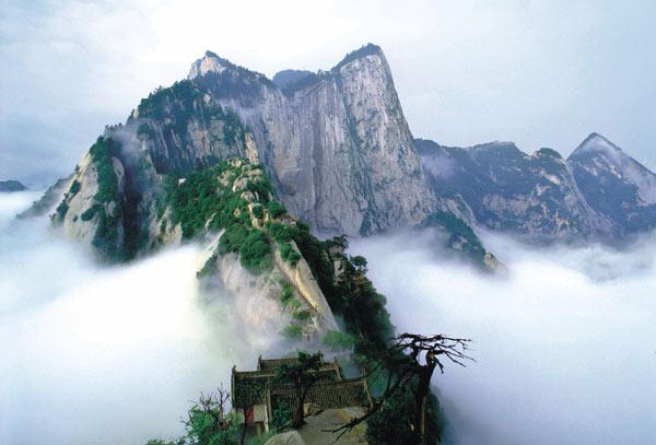 Mua vé máy bay giá rẻ đi Hong Kong