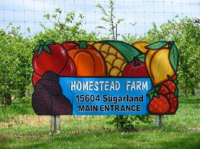 Ghé thăm nông trại vui vẻ Homestead ở Mỹ