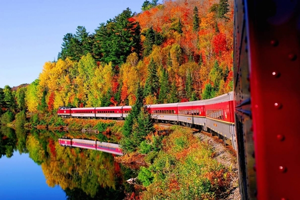 Trải nghiệm ngắm cảnh lá đỏ trên tàu hỏa
