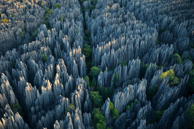 Khám phá Madagasca với khu rừng có hàng loạt tháp sắc nhọn