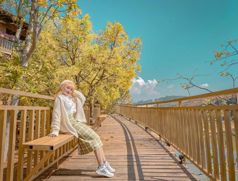 Du lịch đến Đà Lạt check in ngay tại con đường Hàn Quốc mới nổi ở đây
